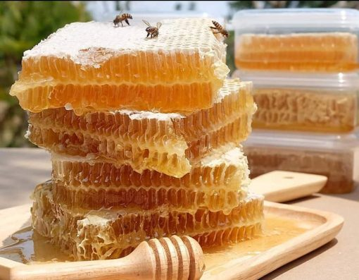 bee honeycomb real